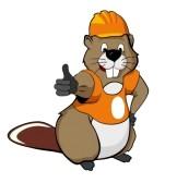 11698349-draw-of-funny-beaver-working-in-helmet