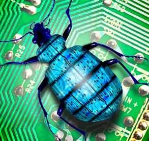 A-computer-bug-007